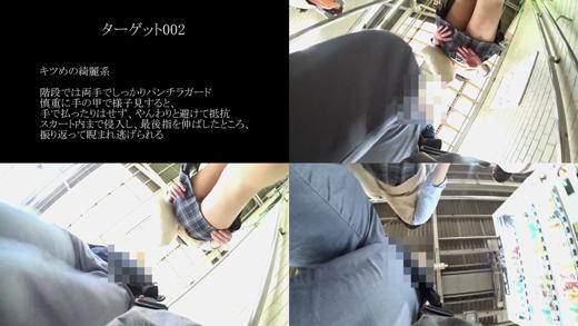 真・玄人痴漢 ファイル002(B級)